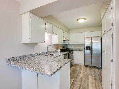 Kitchen-New-New-2